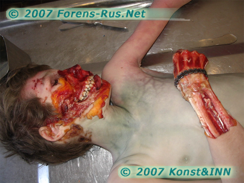 Посмертное повреждение грызунами