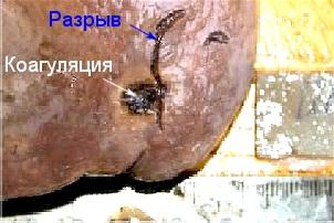 Прикрепленное изображение: monthly_02_2011/post-423-1298417288.jpg