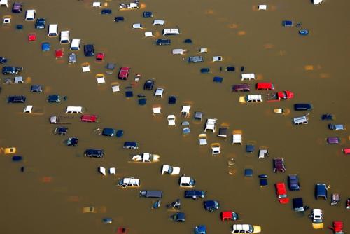 Прикрепленное изображение: Потоп.jpg
