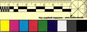 Прикрепленное изображение: ruler_1_color.jpg
