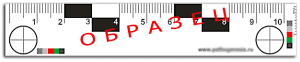 Прикрепленное изображение: ruler07.gif