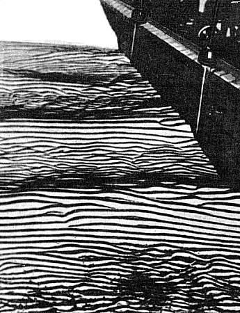 Прикрепленное изображение: Песчаные рифели при отливе.jpg