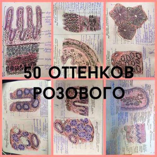 post-268-0-75992900-1443351968_thumb.jpg
