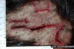Повреждения стамеской