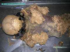 Повреждения в котле по приготовлению кормовой муки